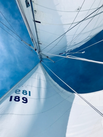 The view of the sails from down below.